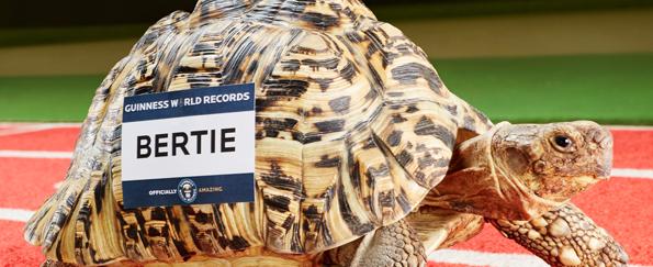 Guinness World Records™ 2016 Quiz