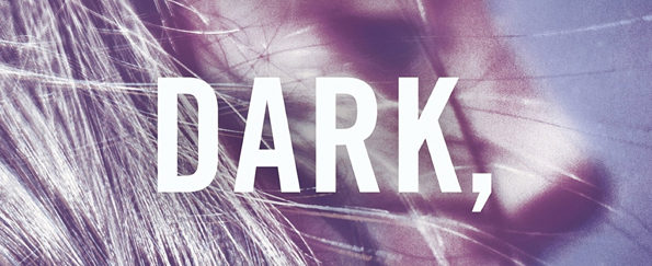 Read an extract from In the Dark, in the Woods by Eliza Wass