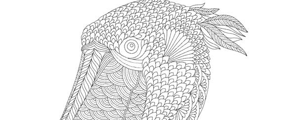 Millie Marotta's Curious Creatures Free Pattern Download: Shoebill