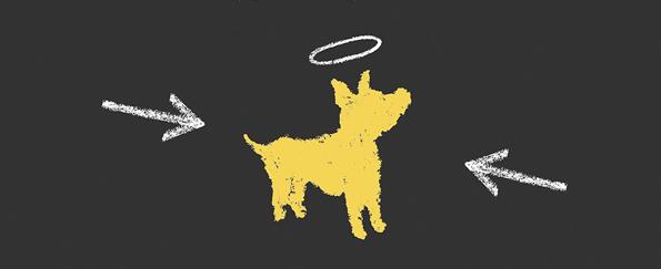 Read Mark Mills' Waiting for Doggo