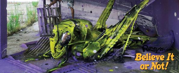 Ripley's Believe it or Not! 2016: Extraordinary Art