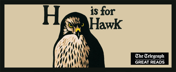 Telegraph Great Reads: H is for Hawk