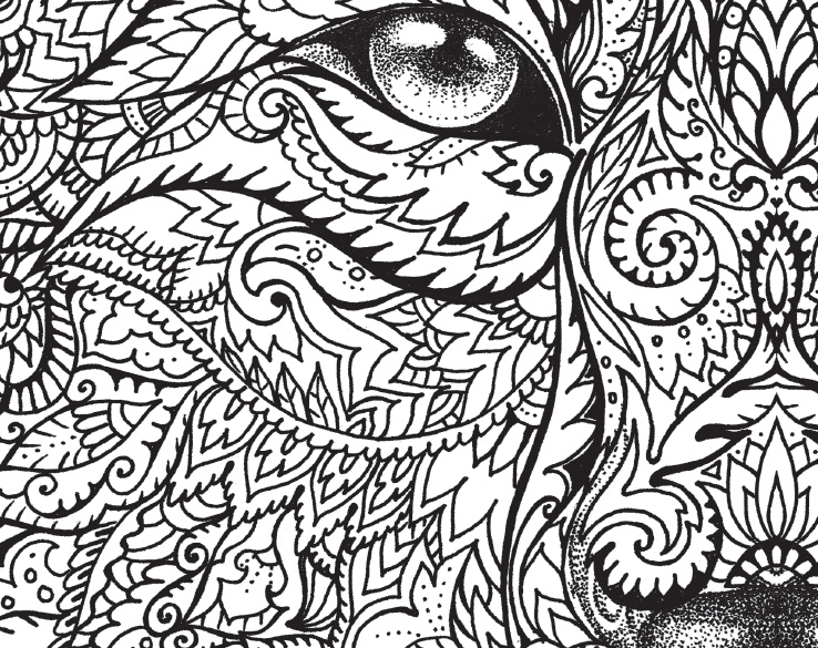 The Macmillan Jungle Book Colouring Book Free Wolf Pattern