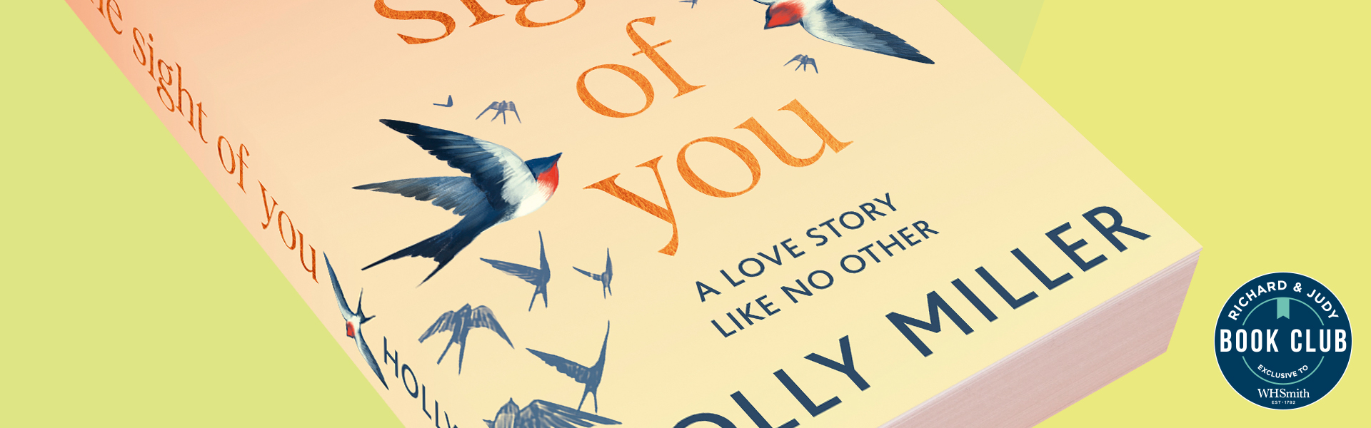 Richard & Judy Introduce The Sight of You by Holly Miller