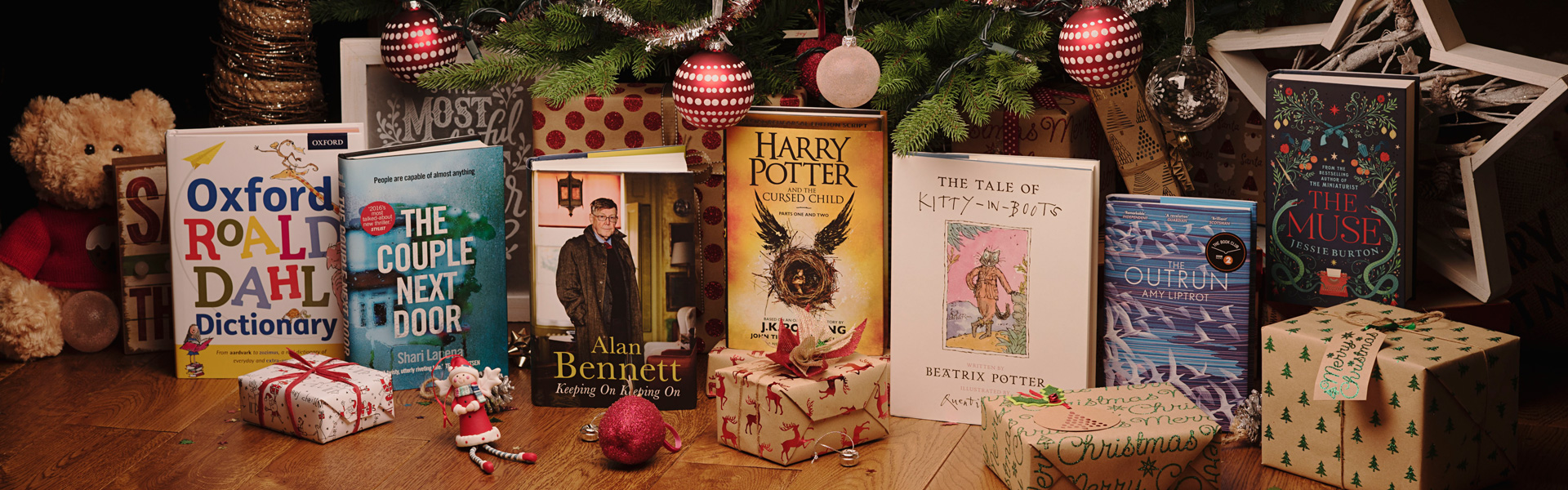 Our Christmas Top Picks: Best Books of 2016